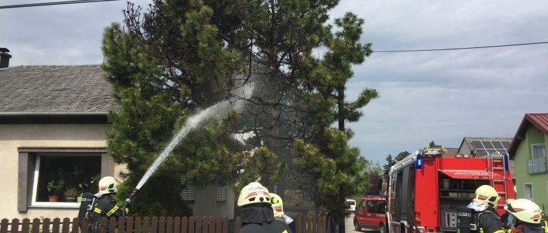 Feuer drohte auf Haus Überzugreifen: Wagramer Hausbesitzer hielt Feuer in Schach