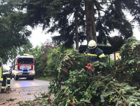 Sturmschaden in St. Pölten-Wagram: Feuerwehr hilft mit Motorsäge aus